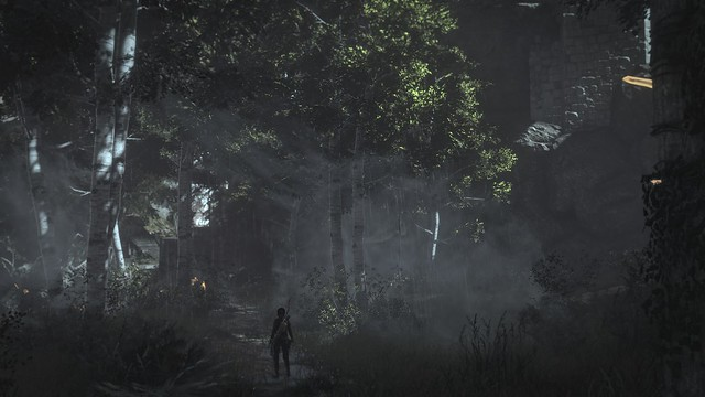 Rise of the Tomb Raider™ - Croft in the forest