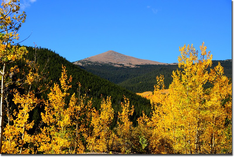 Fall colors, Mount Evans Scenic Byway, Colorado (17)