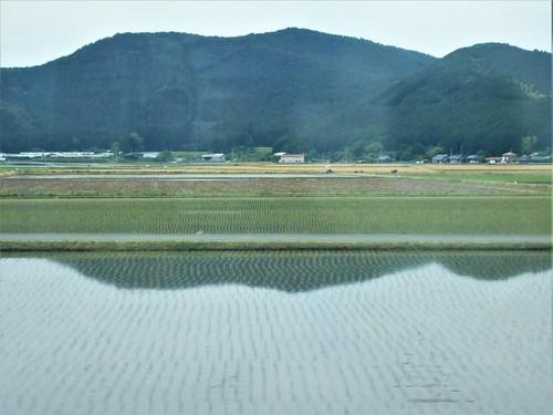 jp-Matsuyama-uwajima (9)
