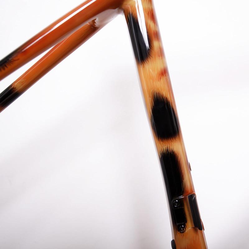 Merida Carbon Frame Repainted by Swamp Things