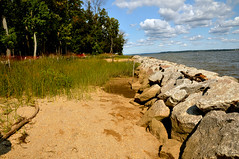 Living Shoreline at Leesylvania State Park