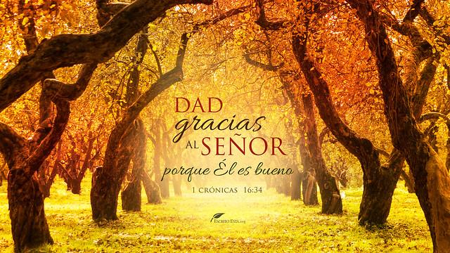 Dad gracias al Señor
