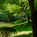 Nitobe Garden at University of British Columbia. Photo: Sarah Fedorchuk