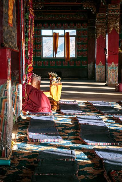 A nun praying in the nunnery, Yarchen Gar アチェンガルゴンパ お祈りをしている尼僧