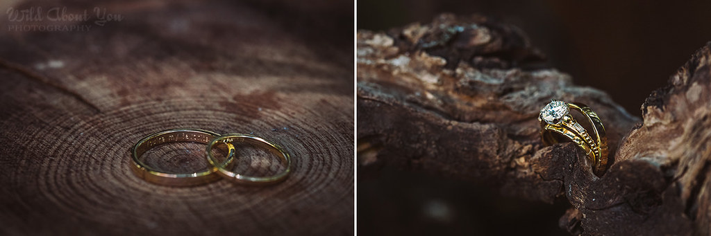 redwoodwedding006