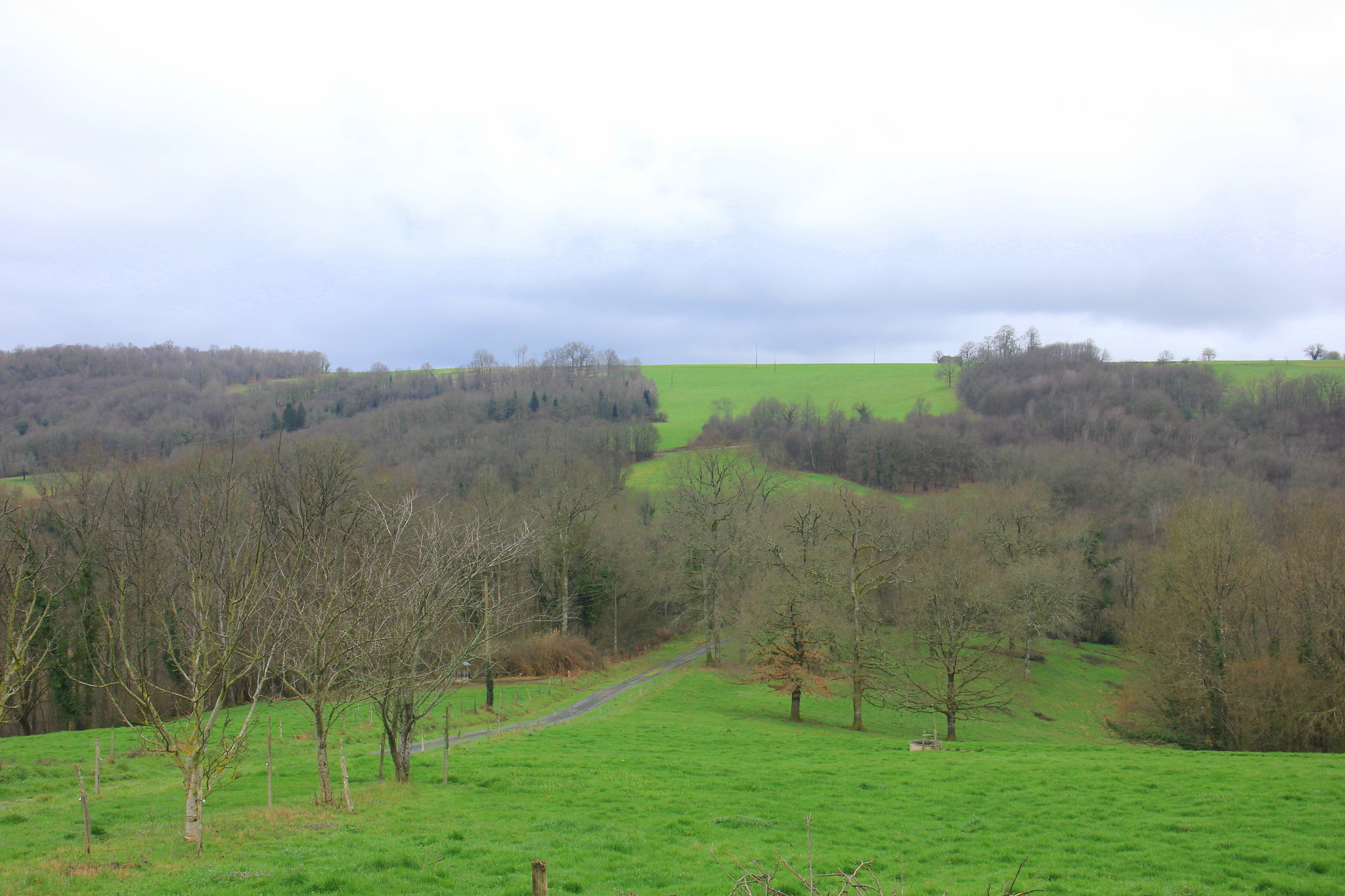 The lush green of the rolling meadows of spring in dordogne