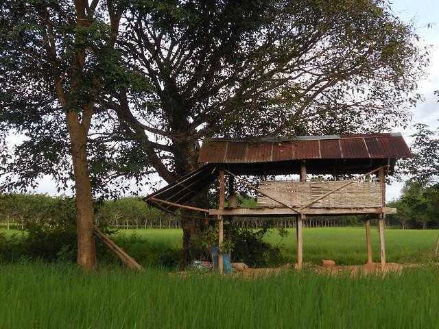 Farm shed 1, Nikon COOLPIX S5200