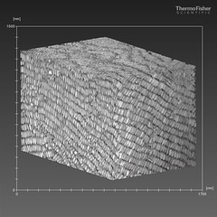 Selfassembled gold nanorods - FIB tomographic reconstruction