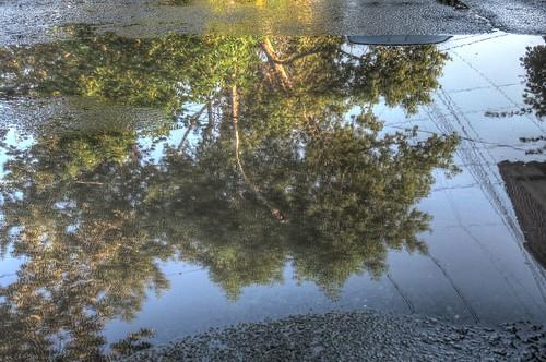 aftre rain 25-08-2017 (3)