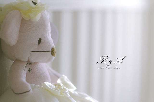 B & A photography