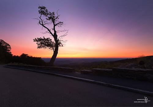 shenandoahnationalpark skyline drive skylinedrive sunrise virginia virginiatourism virginiaforlovers