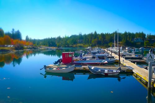 Roche Harbor-012