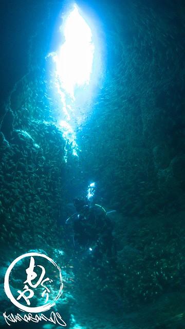 魚の数ランキング第一位やねw 洞窟の光もキレイでした!
