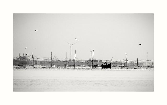 Pescar in Marea Neagra, Olympus E-M1, Lumix G Vario 100-300mm F4.0-5.6 Mega OIS