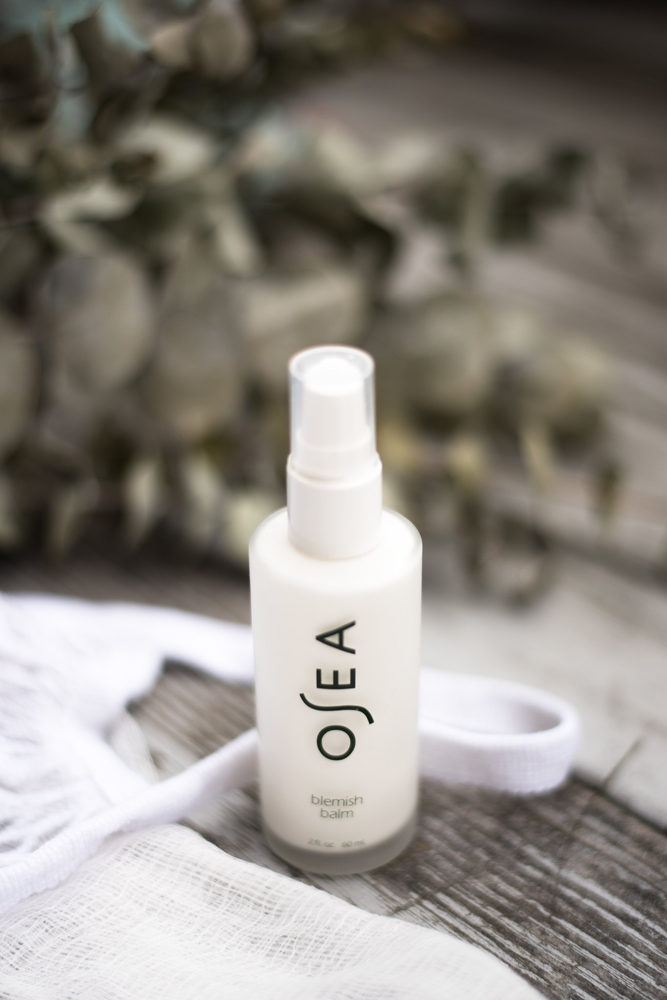 Osea Malibu Clean Skincare Review on juliettelaura.blogspot.com