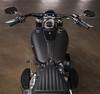 Harley-Davidson 1745 SOFTAIL SLIM FLSL 2019 - 4