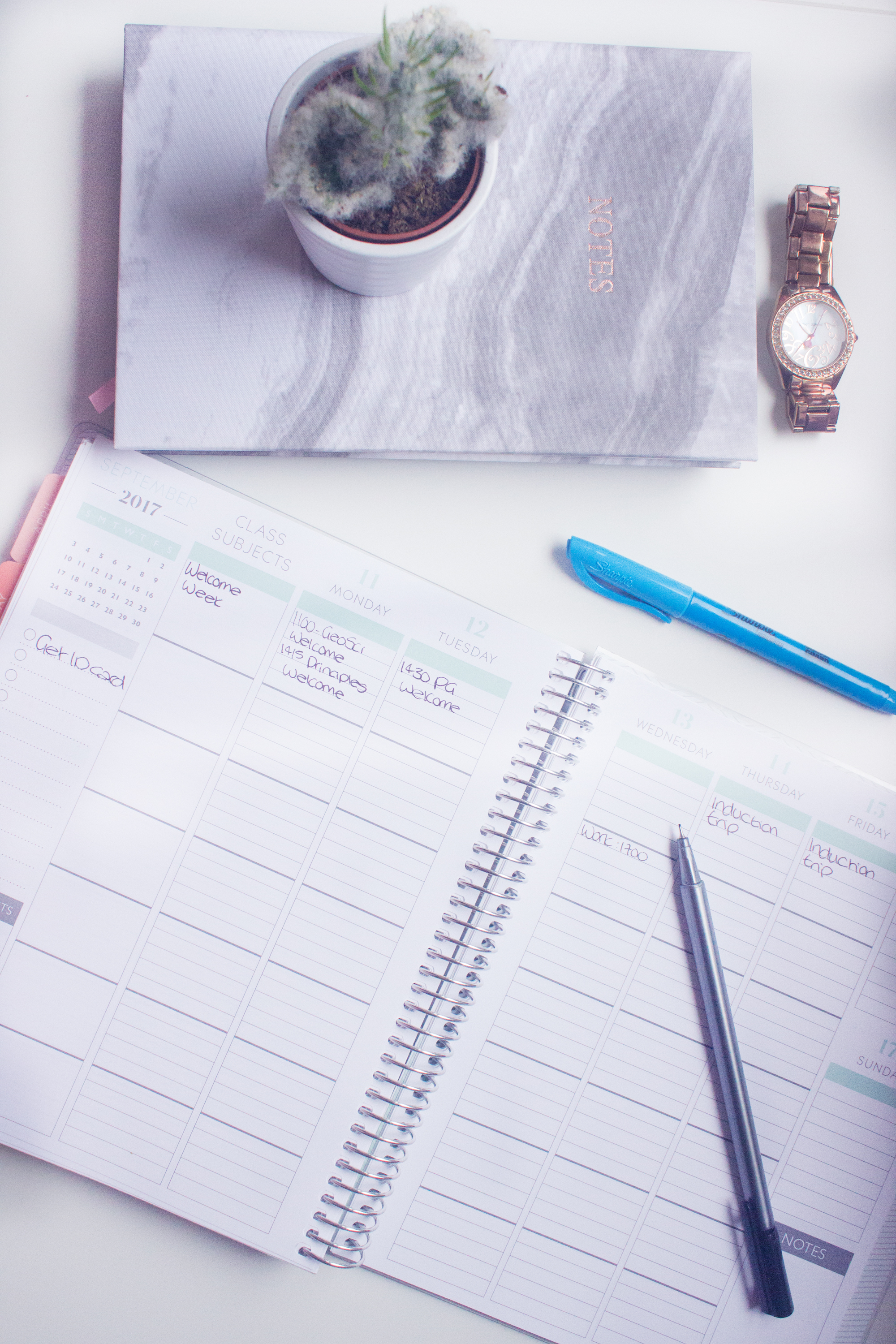 Planning & organisation to help you survive your third year of university
