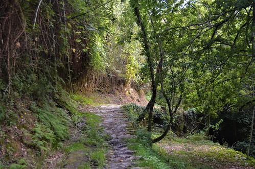 Caminho do Prado IX