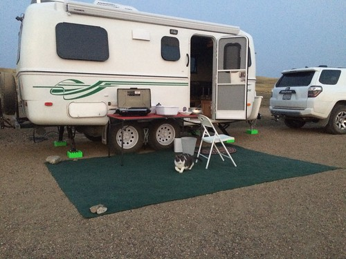 Grasslands East block campsite with puck