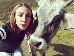 'Cow-Selfie' 😍😍😍