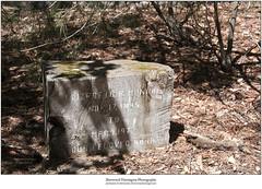 Redwood Headstone 3