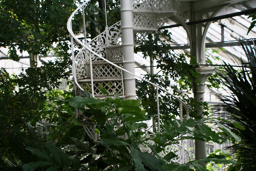 Bel escalier en colimaçon dans les serres tropicales du jardin botanique de Copenhague.