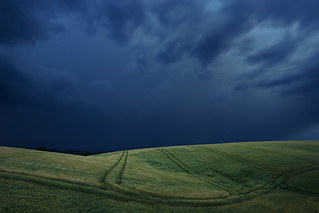 The storm and the wheat field