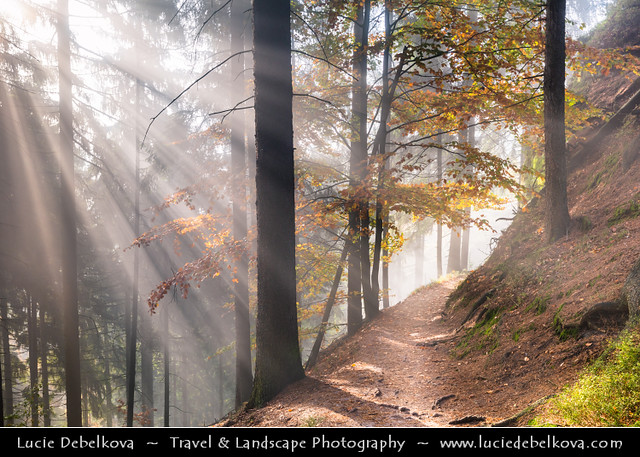 Czech Republic - Bohemian Switzerland National Park - České Švýcarsko - Magical Autumn Morning walk
