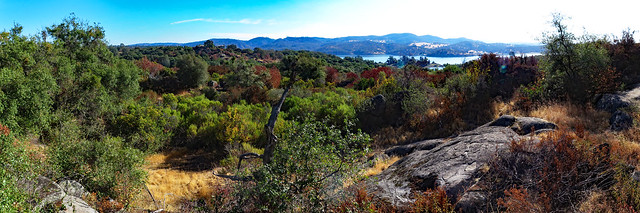 Foothill Forest and Lake Panorama