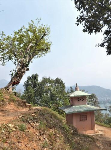 n-pokhara-Pagode-Paix (8)