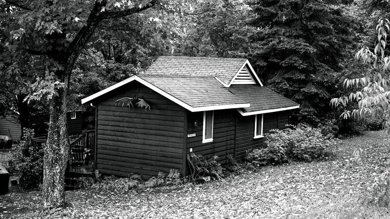 Moose Cabin