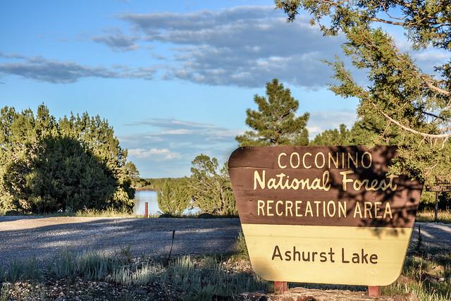 Camping: Ashurst Lake