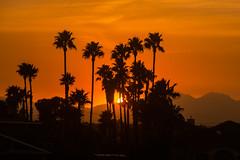 D19361E7 - Smokey Sunset Over Mt Diablo
