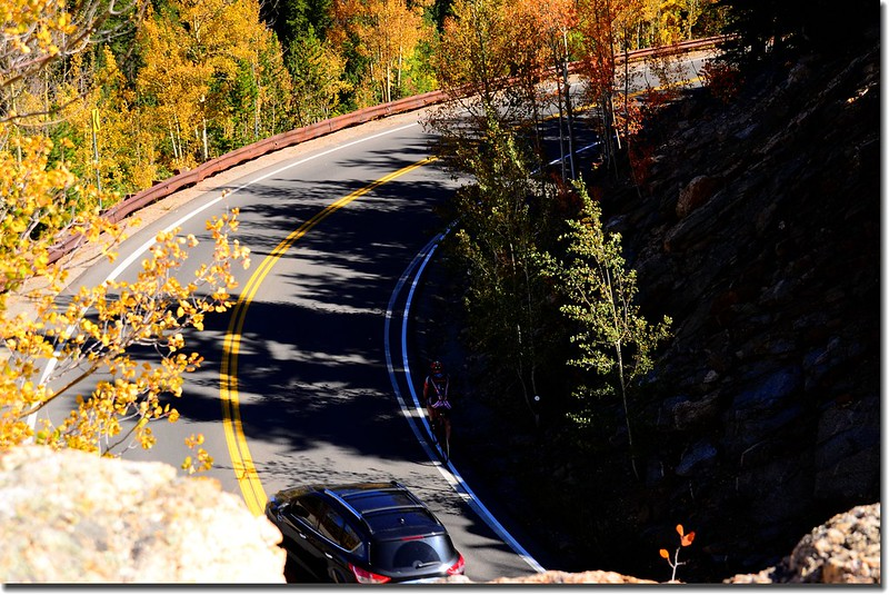 Fall colors, Mount Evans Scenic Byway, Colorado (28)
