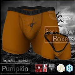 Jz for Men Boxers Black Widow Pumpkin ad