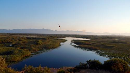 skadar lake bozaj hornisse im flug montenegro sonnenuntergang 2017