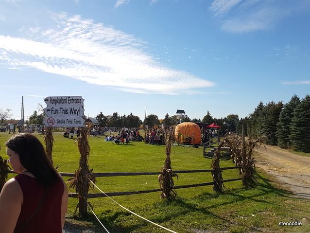 Whittamore's Farm