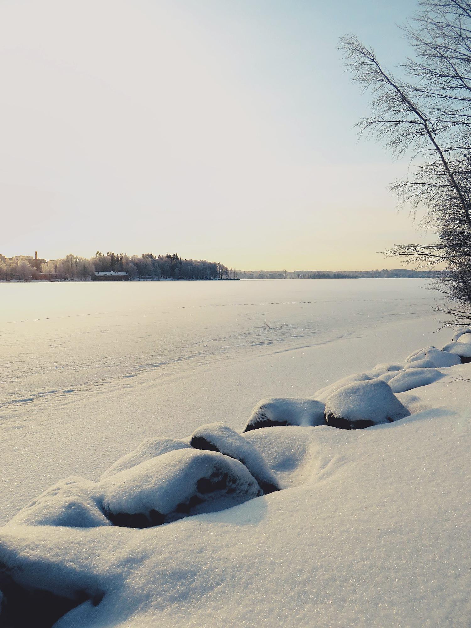 talviyllätti2