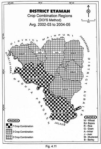 District Etawah Crop Combination Regions