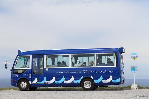 Sightseeing Bus