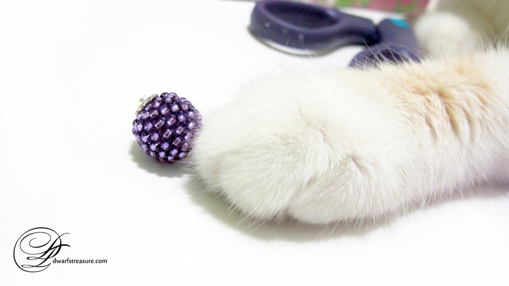 cat paw playing with purple beaded bead charm
