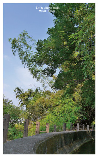 知高圳步道(雪蓮步道)-3