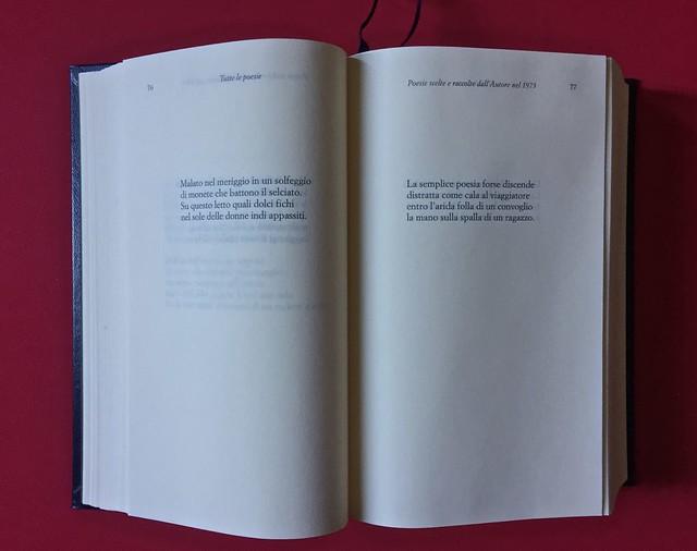 Sandro Penna, Poesie, prose e diari. Mondadori, i Meridiani; Milano 2017. Resp. gr. non indicata. Testi poetici, uno per pagina: a pag. 76 e 77 [part.].