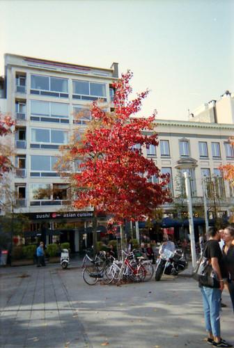 Autumn in Antwerp