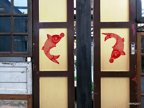 Doors and Fishes