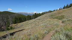 Segment 6, Colorado Trail, near Breckenridge, CO10