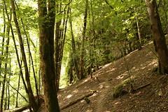2015-07-05-10-54-54_Les Forts Trotters_dans le Haut Doubs