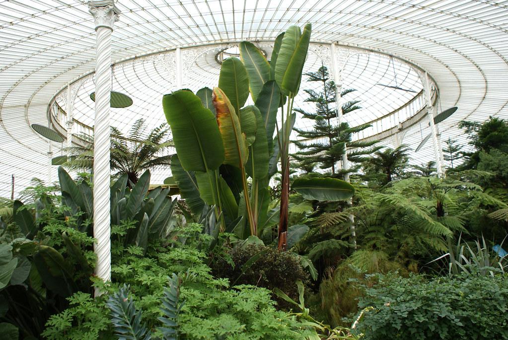 Jardin botanique de Glasgow dans le quartier de West End.