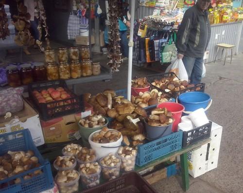На асфальті біля ринку — радіоактивні гриби