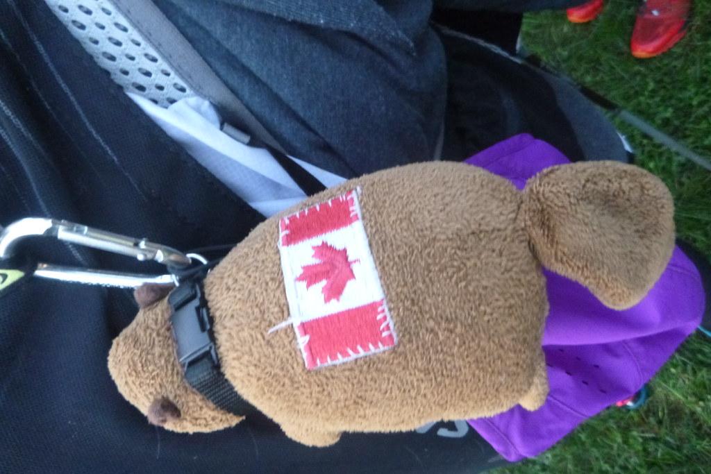 Gordon, the Canadian rogaining mascot